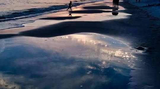 Beaches on the Forgotten Coast
