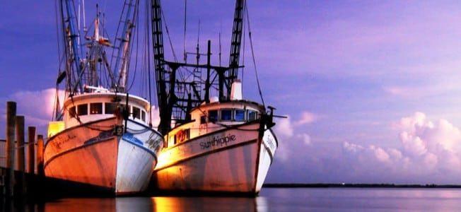 Discover Apalachicola, Florida