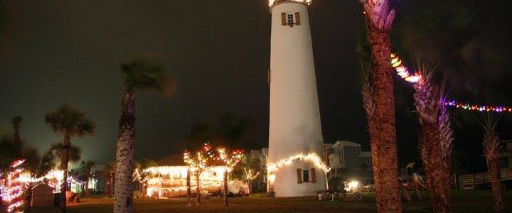 Palm Tree Lighting On St. George Island