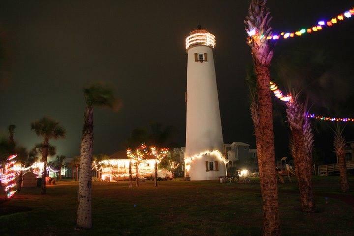 Palm Tree Lighting SGI